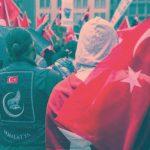 Graue Wölfe und türkischer Nationalismus